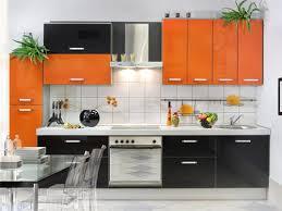 Kitchen Interior Design In India 3595 Home And Garden Photo Kitchen Interior Colors