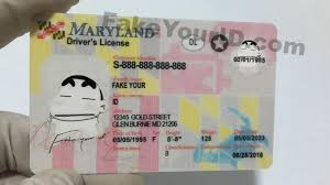 Premium We Buy Make - Id Ids Scannable Maryland Fake