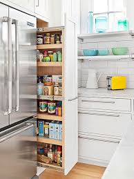 roll out pantry next to fridge breathtaking fridge kitchen contemporary best inspiration