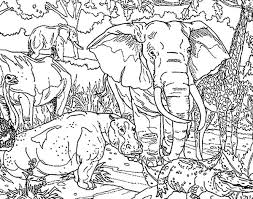 Small Picture Sketch of African Elephant Coloring Pages Sketch of African