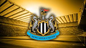 Image result for newcastle united logo