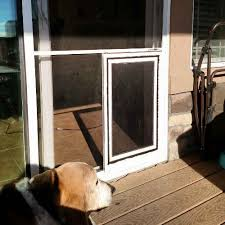 sliding glass patio dog doors in denver and the front range the sliding screen door with