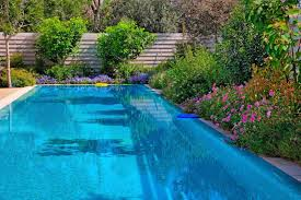 Poolside Plant Info: Tips For Planting Around Pools ...