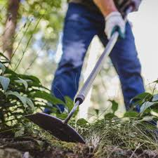 weeding 101 how to weed your garden