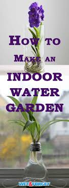 brighten up your home with an indoor water garden learn how to create your own