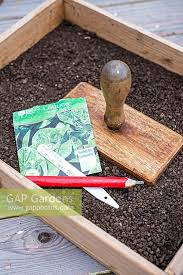 old wooden seed trays designs