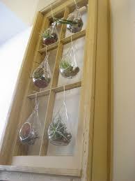 chuck does art diy hanging window frame tillandsia air plant terrarium and wall art