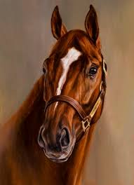 curlin my favorite race horse of all time from the moment i first saw him run what a heart beautiful horse has the same coloring as secretariat