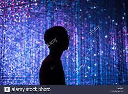Fairy Lights Silhouette Silhouette With Fairy Lights Stock Photo 139373380 Alamy