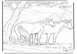 Realistic Horse Coloring Pages For Dr Schulz