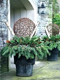 outdoor winter pots ideas winter plants for planters winter planter ideas winter flowering plants for patio