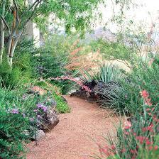 easycare desert landscaping ideas desert garden ideas20