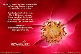 Pravs World Good Morning Quotes Best of Do Not Say Everything Would Be So Senseless See The Lonely Rose Bud