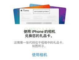Pass Chinese Gift Itunes Id Card Redeem To Obtgame Through Apple Verify