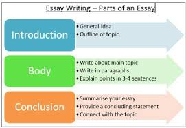Different parts of essay writing