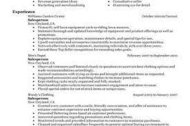 Summary For Resume Retail Resume Summary Examples For Retail Hloom Office Templates