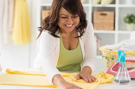 Housekeeper Services Bay Area Nanny Services Domestic Services Caregivers Companions