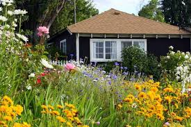 Small Picture Wildflower Garden Ideas Garden ideas and garden design