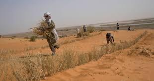 Actualité et infos maliennes en continu: Mali Landerinfos Hilfsprojekte Aktion Gegen Den Hunger