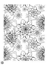 Volwassen Kleurplaten Bloemen