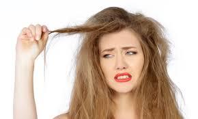 「髪の毛 ぱさぱさ」の画像検索結果