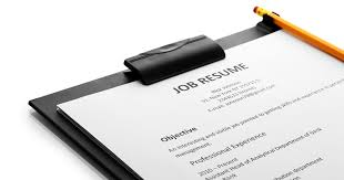 Resume Writer Beauteous Professional Resume Writing Services By Resume Writer For You