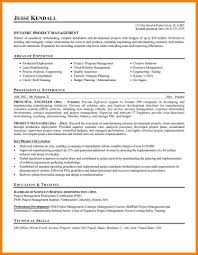 Resume Examples For Project Managers It Project Manager Resume