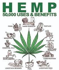 Hemp Uses Chart Cannabinoids A Booming Wholesale Industry The Sunshine