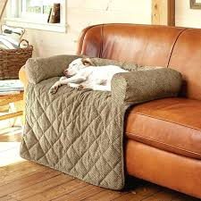 top furniture covers sofas. Modren Sofas Waterproof Sofa Cover For Pets Elegant Best Furniture Covers Awesome Inside  25  Top Sofas S