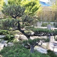 los angeles japanese garden