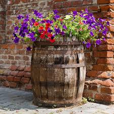 barrel garden. Download Petunia Barrel Garden Stock Image. Image Of Patio, Wall - 32235815
