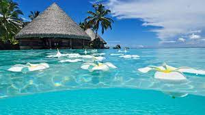 37+] HD Wallpaper Beach Paradise on ...