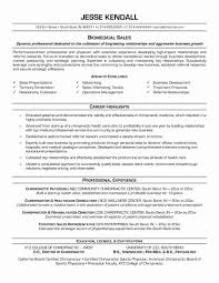 Hybrid Functional And Chronological Resume Inspirational Examples