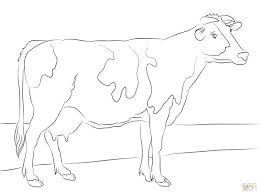 Cow Template Cow Coloring Pages For Toddlers Free Template Free
