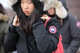 canada goose jackets which are very expensive and very popular are mysteriously taking flight
