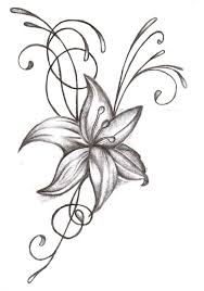 Lily Sketch Tattoo At Paintingvalleycom Explore Collection Of