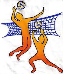 Картинки по запросу volleyball