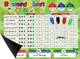 Daskid Magnetic Behavior Star Reward Chore Chart One Or Multiple Kids