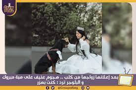بعد إعلانها زواجها من كلب .. هجوم عنيف على هبة مبروك .. والبلوجر ترد: كنت  بهزر - CrewPedia - كــروبيديا