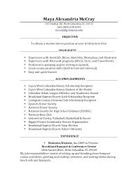Resume Objective Examples For Internships Objective For Resume ...