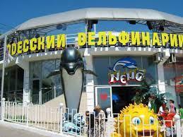 Поездка из Затоки в Одесский дельфинарий