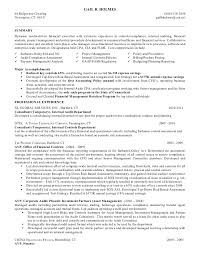 external auditor sample resume by gail holmes resume mar c mi 2011 - Senior  Auditor Resume
