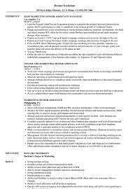 Unusual Senior Associate Legal Resume Pictures Inspiration Entry