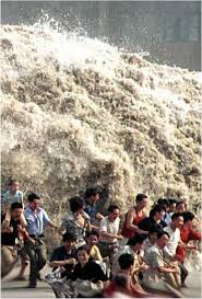 tsunami living earthquakes in the pacific northwest fig 9 10 tourists at phuket resort have rushed to the beach to