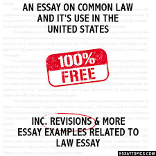 common law essay author edition beautifully formatted full prose style essay plans author edition beautifully formatted full prose style essay plans