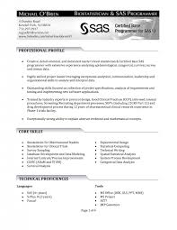 sas resume sample sas programmer resume sas resume samples senior business senior
