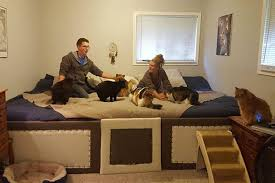 dog bedroom furniture. Slumber: At 11ft Across, There\u0027s Room For Robdogbird, His Girlfriend And Their Seven Pets Dog Bedroom Furniture E