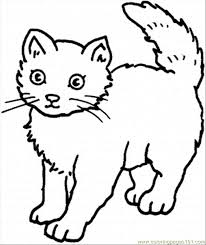 Small Picture Cat Pictures To Color 2270