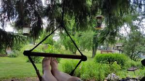 view from best choice s deluxe sky chair hammock