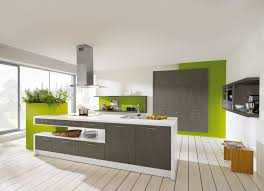 Green And Grey Kitchen Furniture Amazing Kitchen Cupboards Ideas Green Wall Kitchen